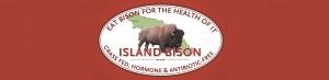 Island Bison Banner