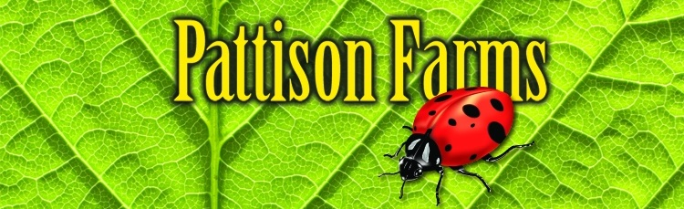 Pattison Farms Logo