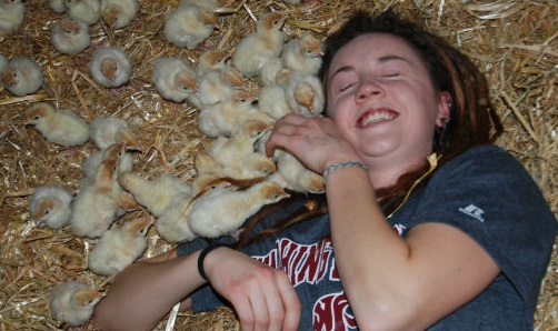 Sadie with Chicks